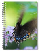 Beauty In Motion Spiral Notebook