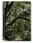 Beauty In The Forest Spiral Notebook