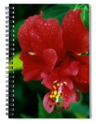 Beauty In The Jungle Spiral Notebook
