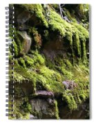 Beauty In The Northwest Spiral Notebook