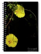 Beauty In The Shade Spiral Notebook