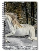 Beauty In The Snow Spiral Notebook
