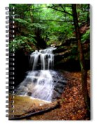 Beauty In The Woods Spiral Notebook