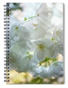 Beauty Is Transcendent Spiral Notebook