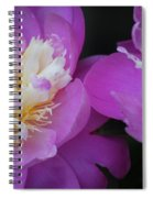 Beauty Is What We Do Spiral Notebook