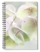 Beauty Mark Spiral Notebook