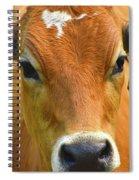 Beauty Mark Spiral Notebook