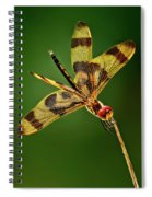 Beauty Marks Spiral Notebook