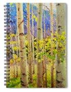 Beauty Of Aspen Colorado Spiral Notebook