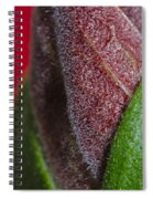 Beauty Of Life Spiral Notebook