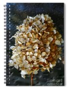 Beauty Of Old Spiral Notebook
