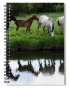 Beauty Of Place Spiral Notebook