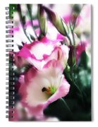 Beauty Of The Day Spiral Notebook