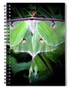 Beauty Of The Luna Spiral Notebook