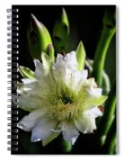 Beauty Of The Night  Spiral Notebook