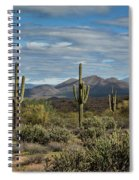 Beauty Of The Sonoran  Spiral Notebook