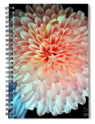 Beauty The Round Spiral Notebook