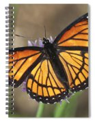 Beauty With Wings Spiral Notebook