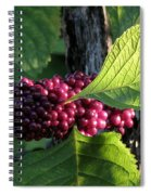 Beautyberry 2 Spiral Notebook