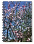Beautiful Spring. Blooming Tree 2 Spiral Notebook