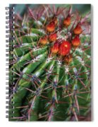 Beauty's Protections Spiral Notebook