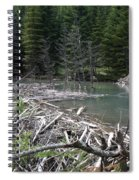 Beaver Dam And Lodge Spiral Notebook