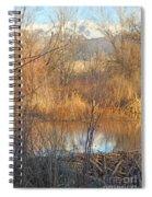 Beaver Dam At Sunset In Colorado            Spiral Notebook