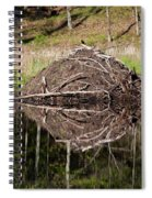 Beaver Lodge Reflection Spiral Notebook
