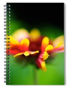 Beckoning  Spiral Notebook