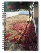 Bed Of Bougainvillea Spiral Notebook