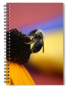 Bee All You Can Bee Spiral Notebook