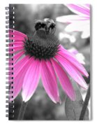 Bee And Cone Flower Spiral Notebook