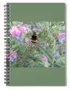 Bee And Flower Spiral Notebook