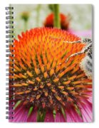 Bee And Pink Flower Spiral Notebook