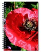 Bee And Red Poppy Spiral Notebook