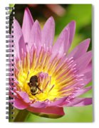 Bee And The Lily Spiral Notebook