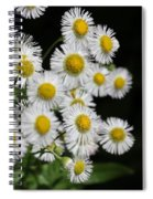 Bee And Wildflower  Spiral Notebook