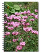 Bee Balm Garden Spiral Notebook