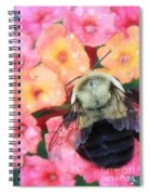 Bee Card Spiral Notebook