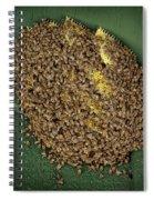 Bee Cluster Spiral Notebook