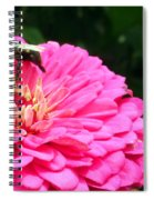 Bee Collecting Pollen Spiral Notebook