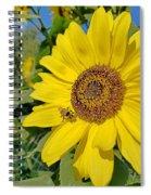 Bee-dazzled Spiral Notebook