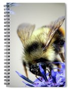 Bee In A Bubble Spiral Notebook