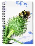 Bee-line 4 Spiral Notebook