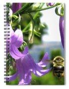 Bee-line 5 Spiral Notebook