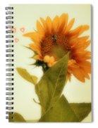 Bee Mine Spiral Notebook