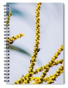 Bee On A Branch I Spiral Notebook