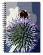 Bee On An Allium Spiral Notebook