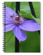 Bee On Bloom Spiral Notebook