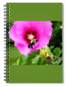 Bee On Edge Of A Hibiscus Flower Spiral Notebook